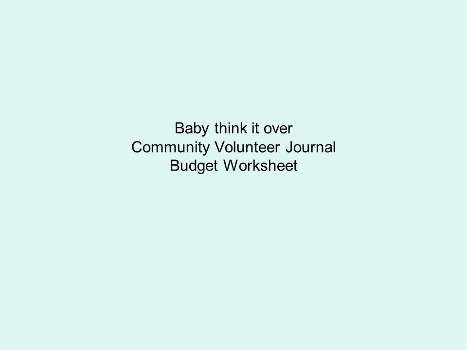 Baby think it over Community Volunteer Journal Budget Worksheet