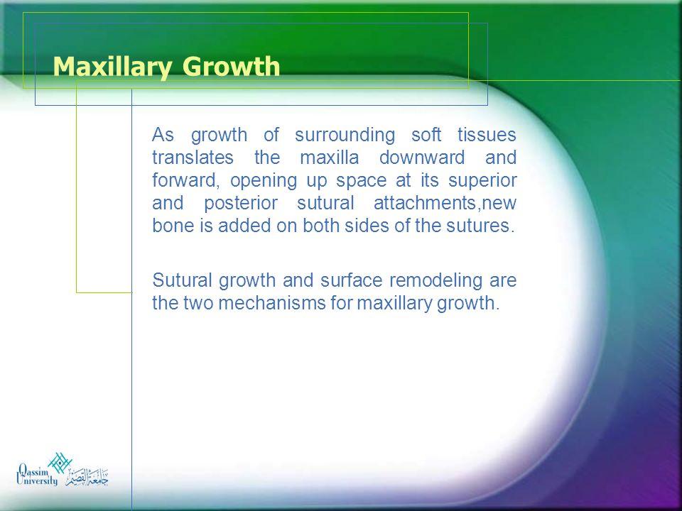 Maxillary Growth