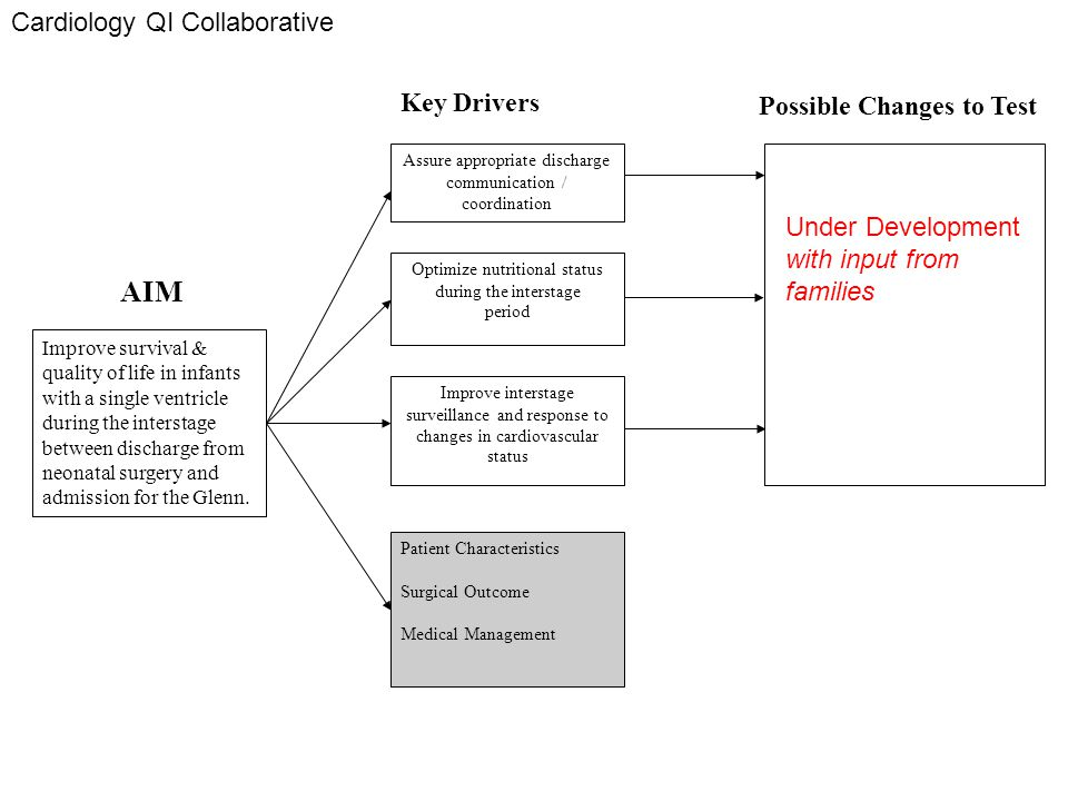 AIM Cardiology QI Collaborative Key Drivers Possible Changes to Test