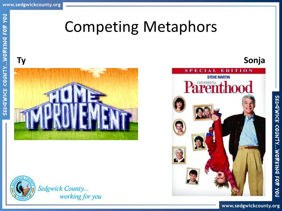Competing Metaphors Ty Sonja