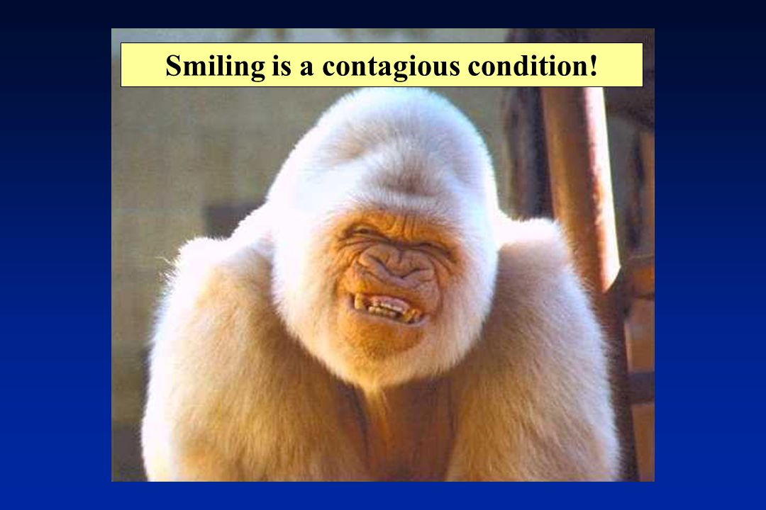 Smiling is a contagious condition!