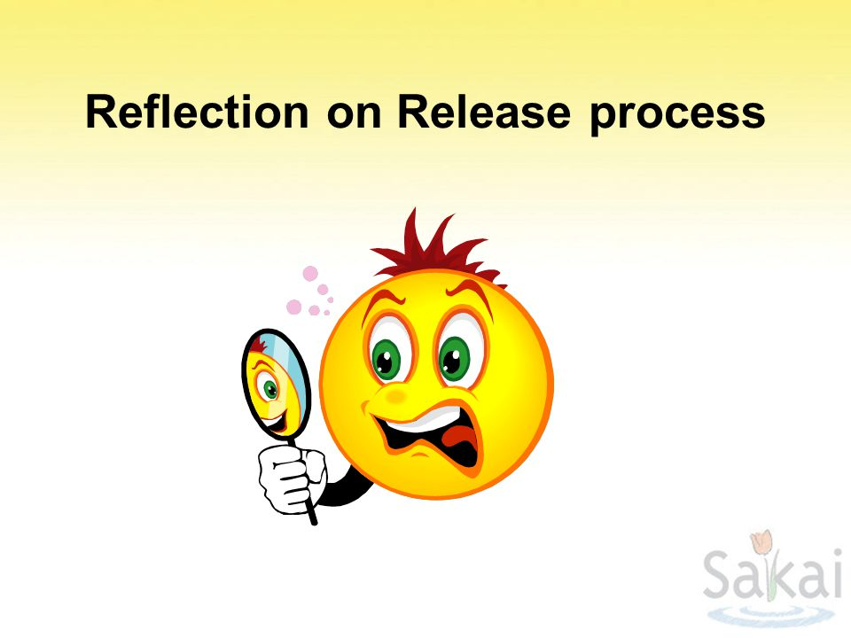Reflection on Release process