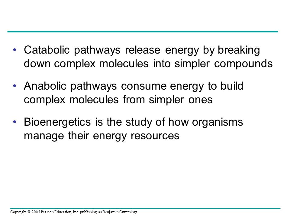 Catabolic pathways release energy by breaking down complex molecules into simpler compounds