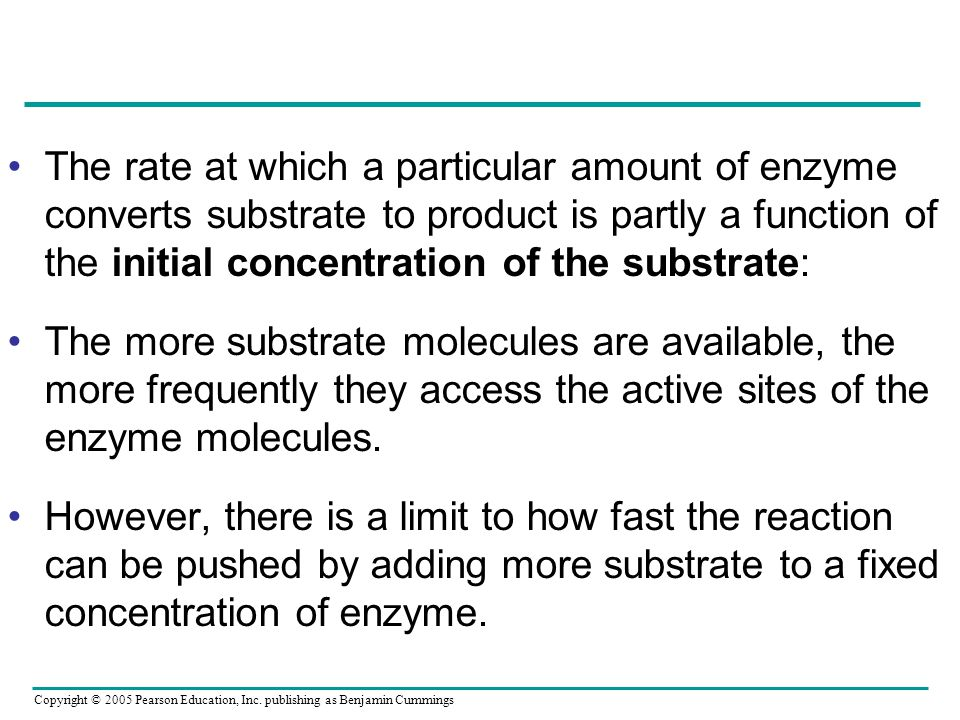 The rate at which a particular amount of enzyme converts substrate to product is partly a function of the initial concentration of the substrate: