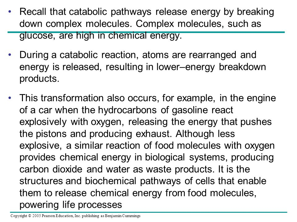 Recall that catabolic pathways release energy by breaking down complex molecules. Complex molecules, such as glucose, are high in chemical energy.