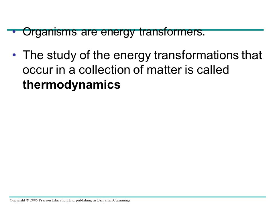 Organisms are energy transformers.