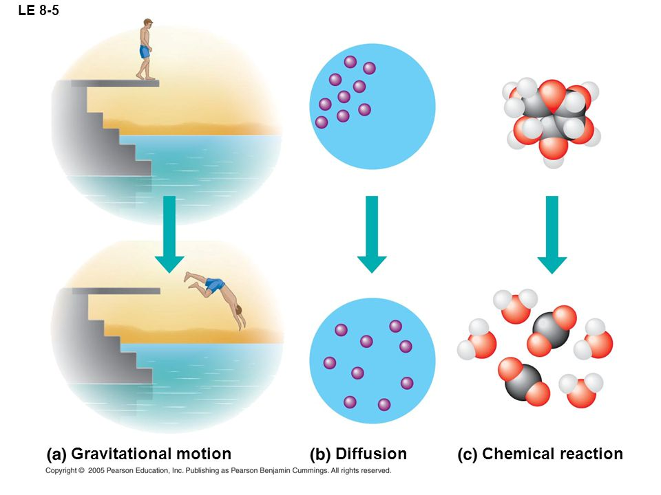 LE 8-5 Gravitational motion Diffusion Chemical reaction