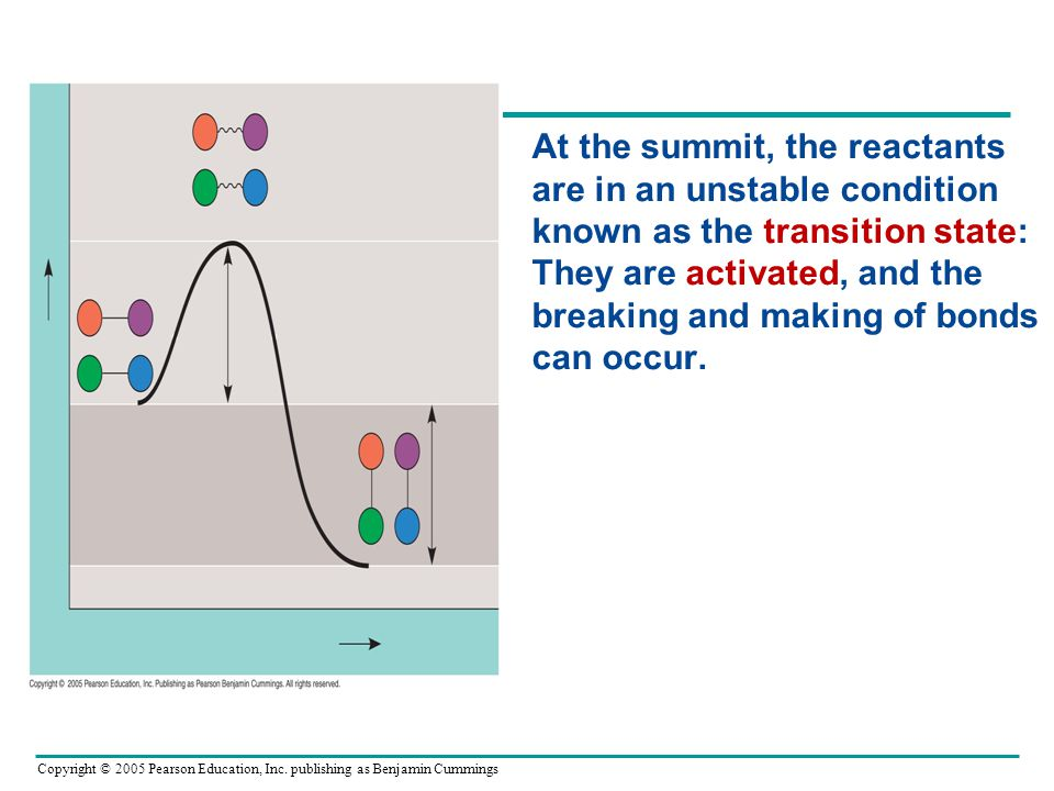 At the summit, the reactants are in an unstable condition known as the transition state: They are activated, and the breaking and making of bonds can occur.