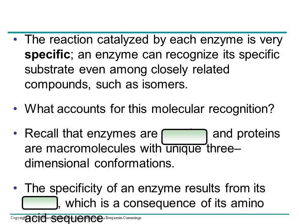 The reaction catalyzed by each enzyme is very specific; an enzyme can recognize its specific substrate even among closely related compounds, such as isomers.