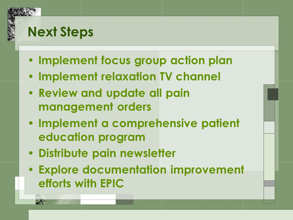 Next Steps Implement focus group action plan