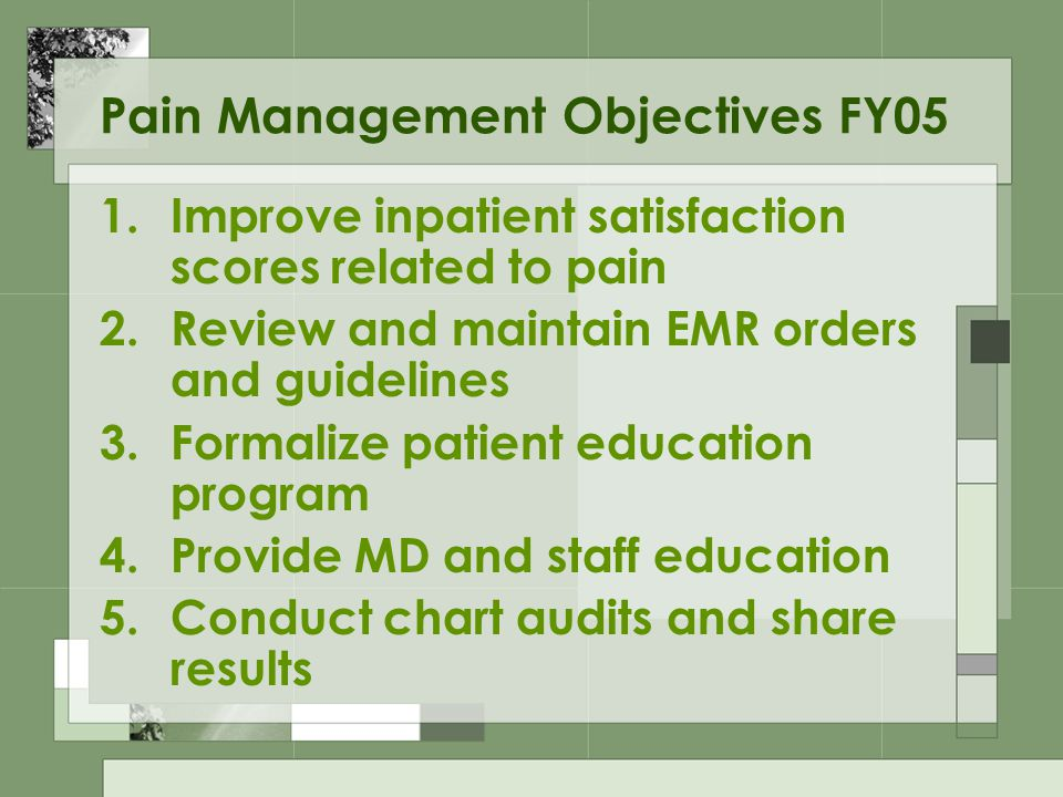 Pain Management Objectives FY05