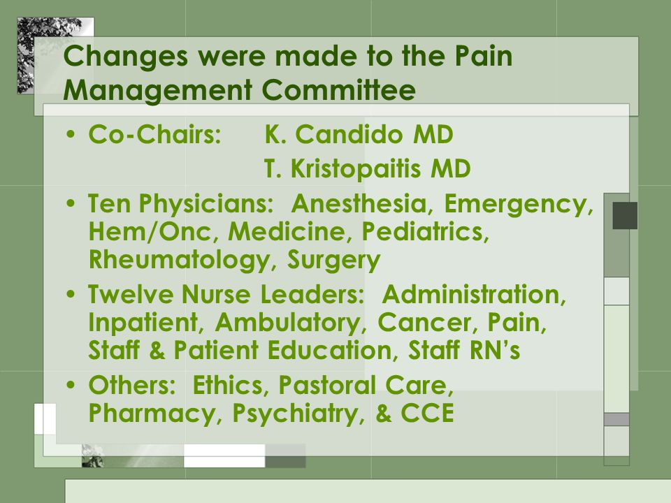 Changes were made to the Pain Management Committee