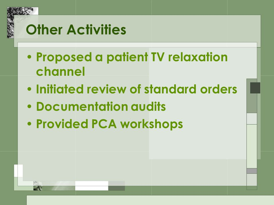 Other Activities Proposed a patient TV relaxation channel