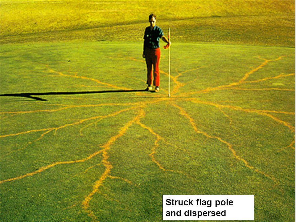 Struck flag pole and dispersed