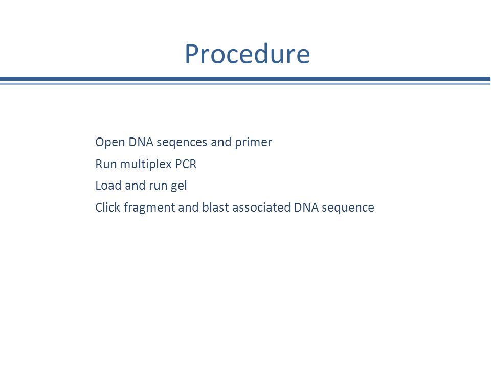 Procedure Open DNA seqences and primer Run multiplex PCR Load and run gel Click fragment and blast associated DNA sequence
