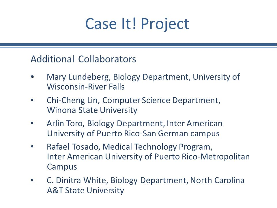 Case It! Project Additional Collaborators