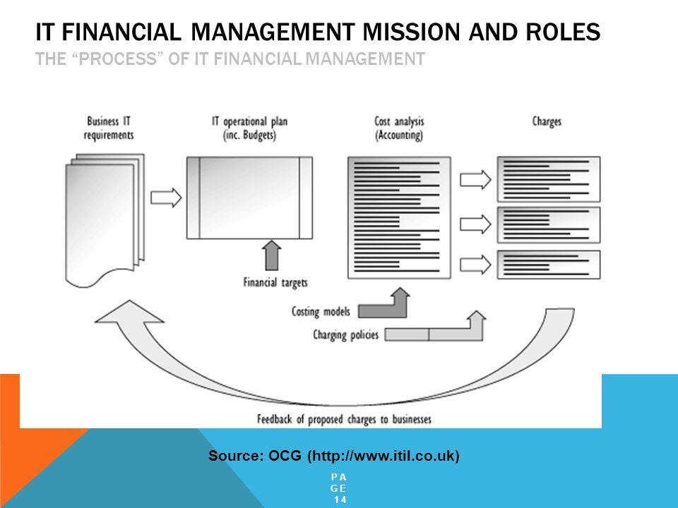 IT Financial Management Mission and Roles The Process of IT Financial Management