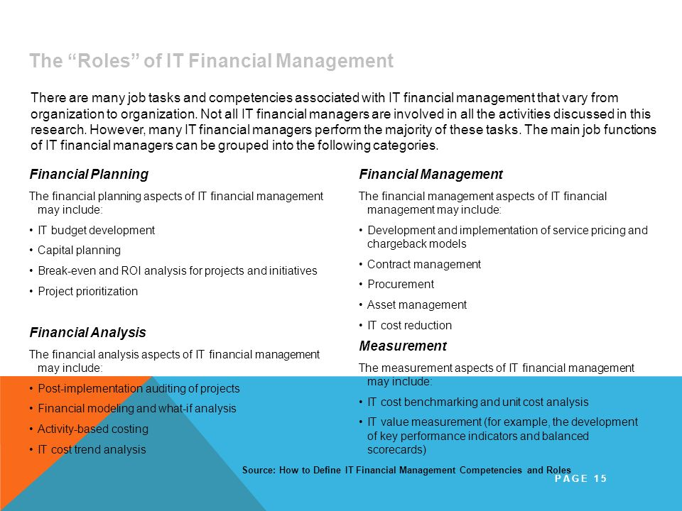 IT Financial Management Mission and Roles The Roles of IT Financial Management