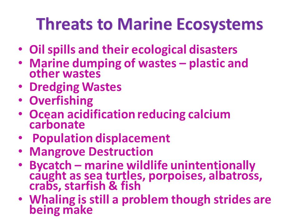 Threats to Marine Ecosystems