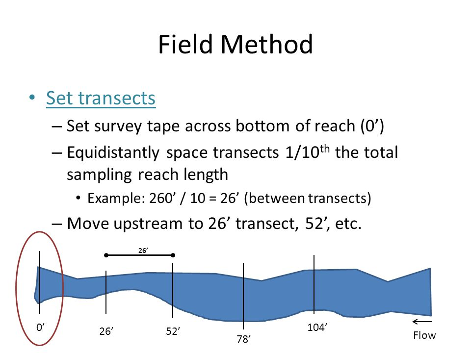 Field Method Set transects Set survey tape across bottom of reach (0')