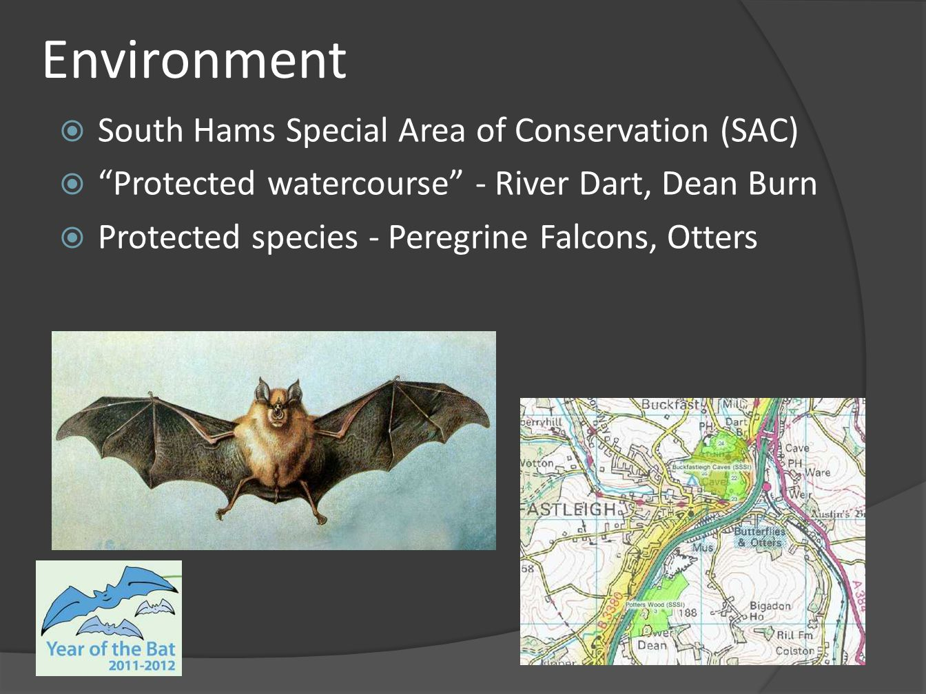 Environment South Hams Special Area of Conservation (SAC)