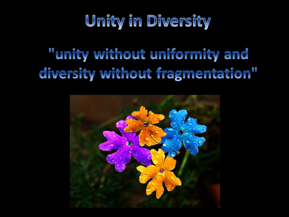 unity without uniformity and diversity without fragmentation