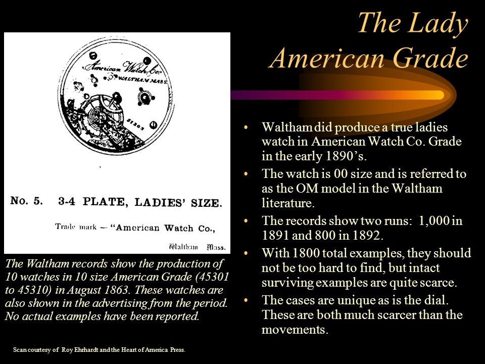 The Lady American Grade