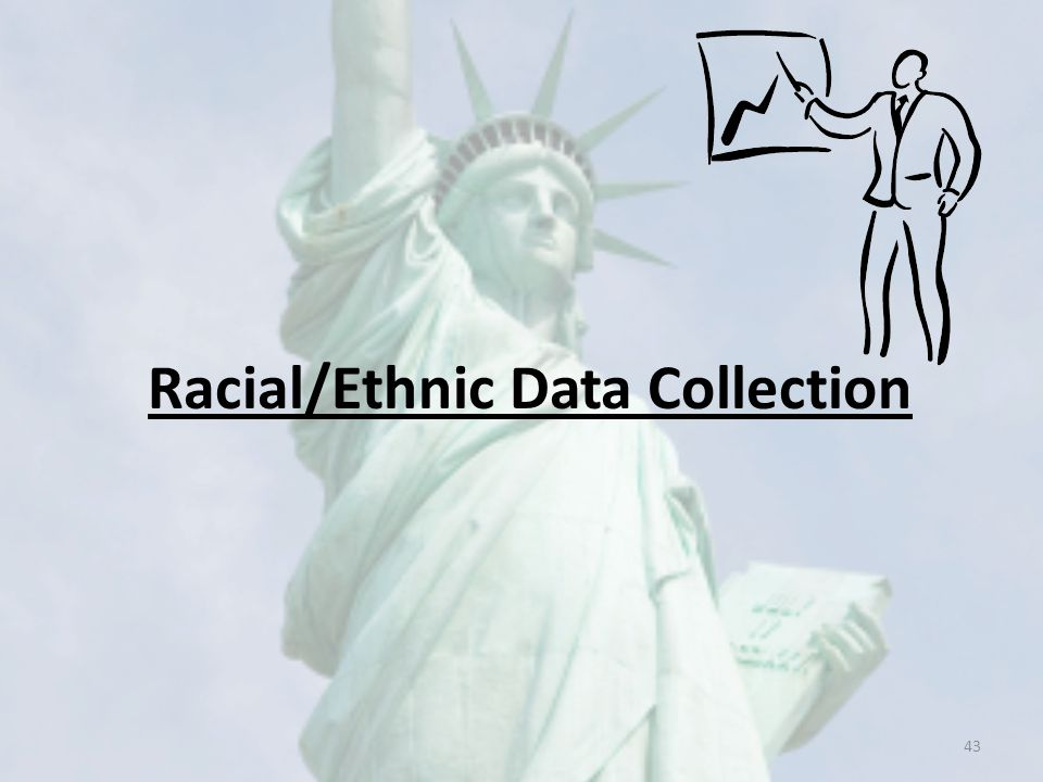 Racial/Ethnic Data Collection