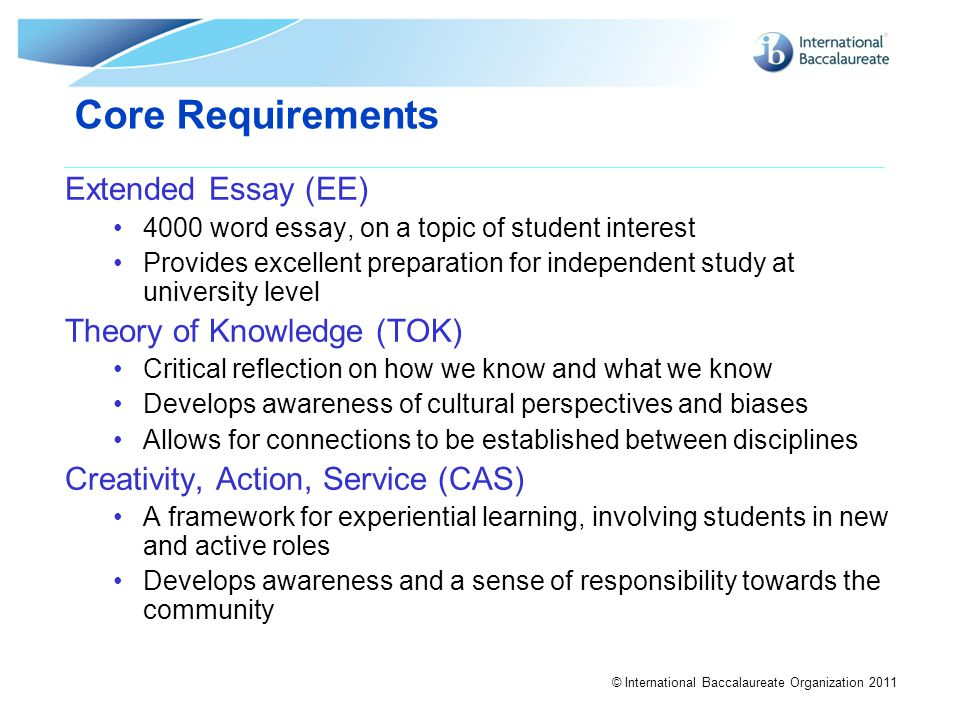 ib extended essay rubric 2011