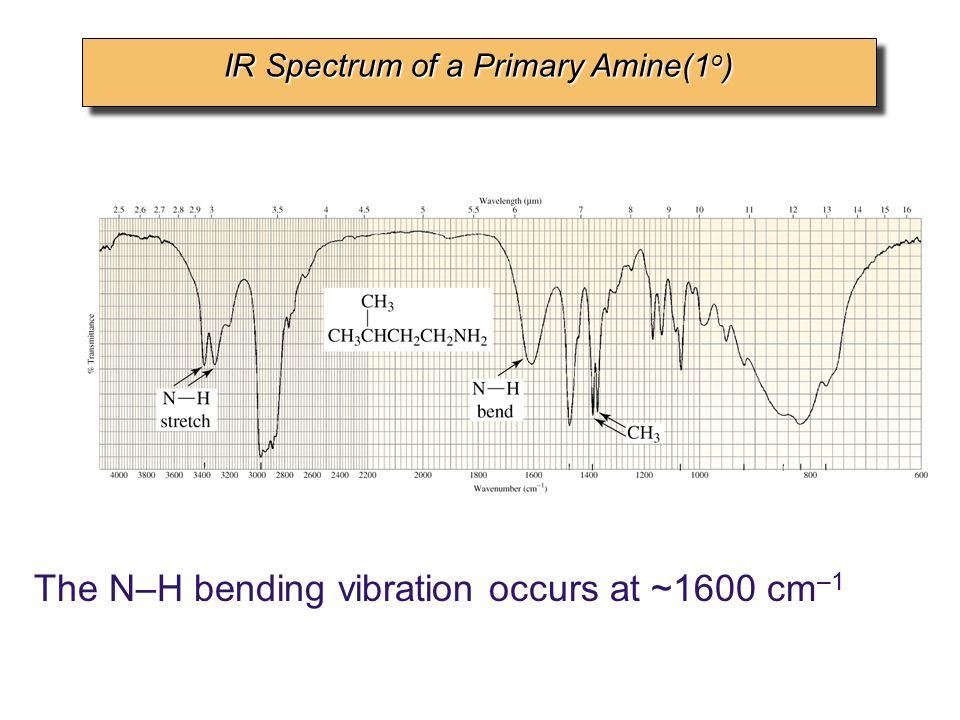 IR Spectrum of a Primary Amine(1o)