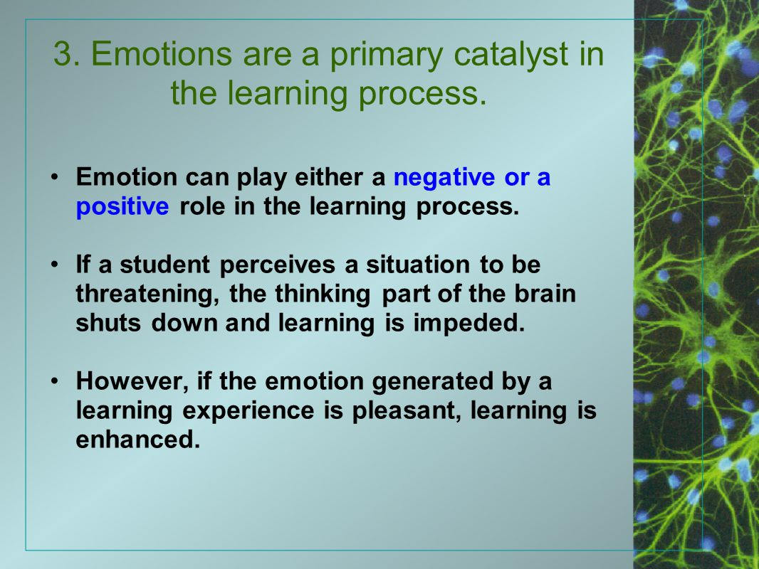 3. Emotions are a primary catalyst in the learning process.