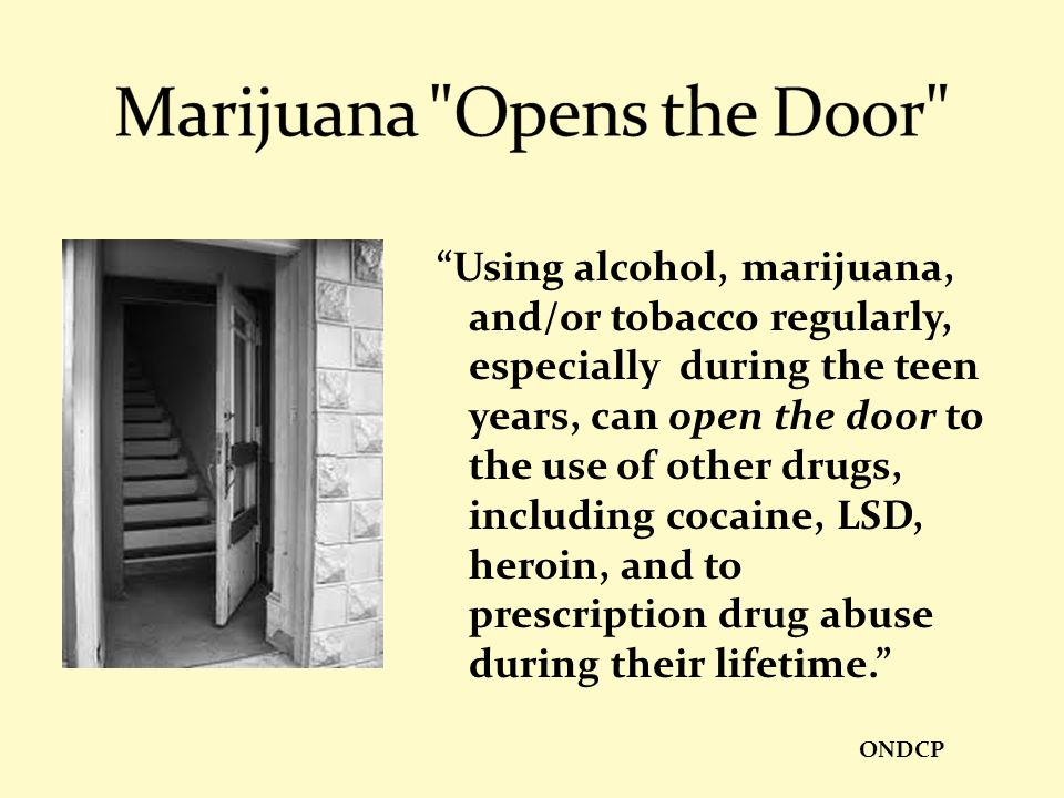 Marijuana Opens the Door
