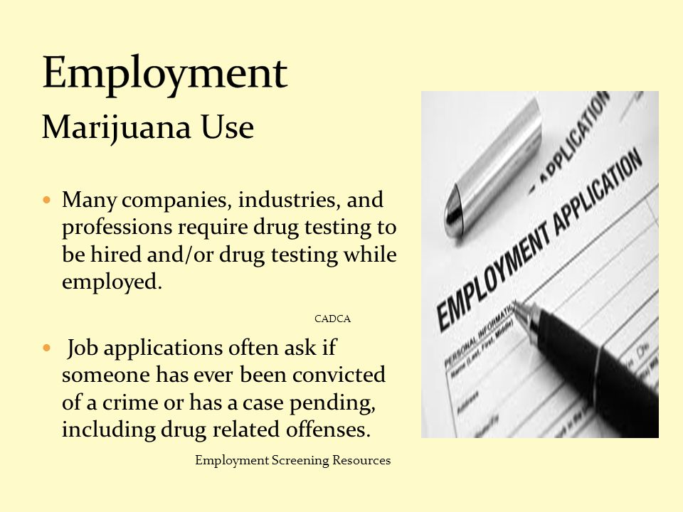 Employment Marijuana Use