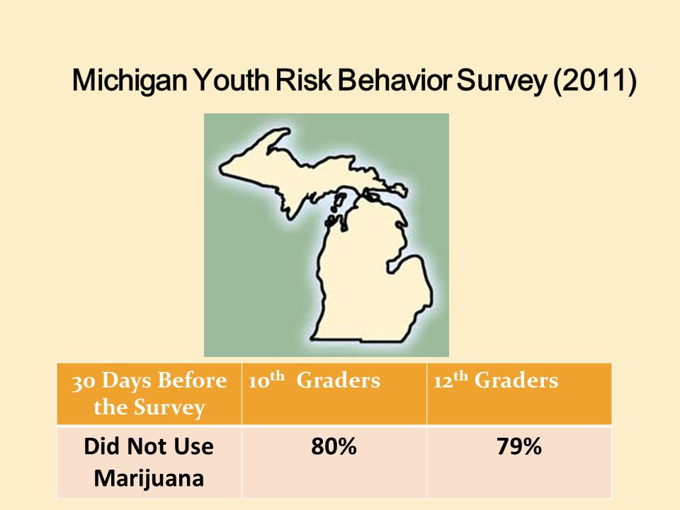 Michigan Youth Risk Behavior Survey (2011)