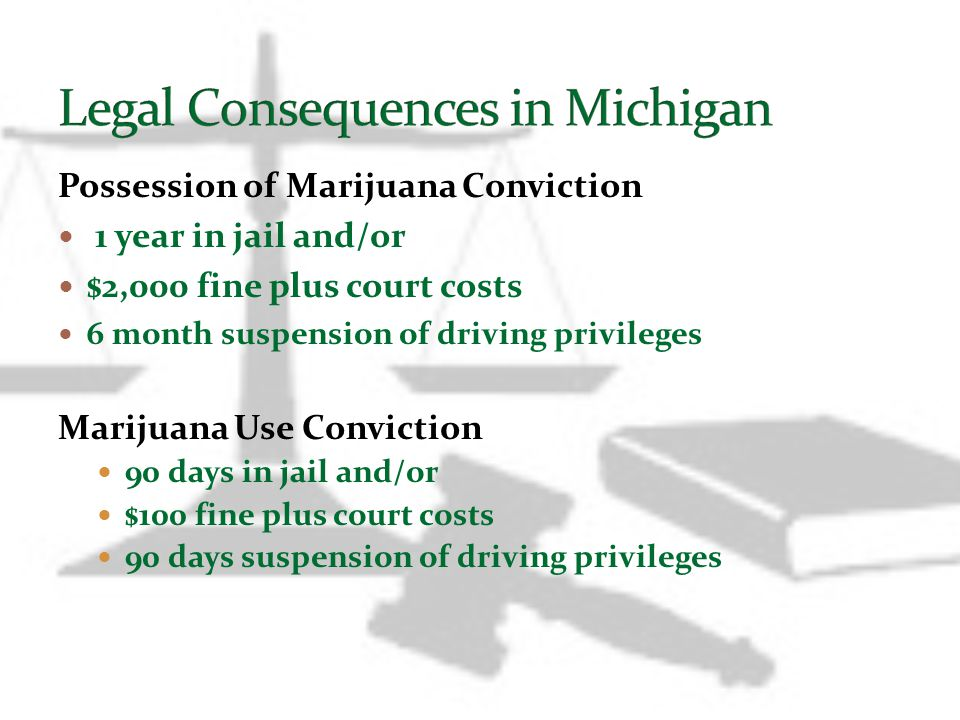Legal Consequences in Michigan