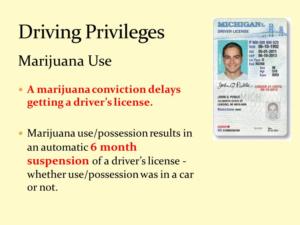Driving Privileges Marijuana Use