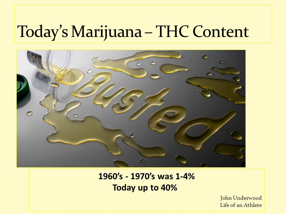 Today's Marijuana – THC Content