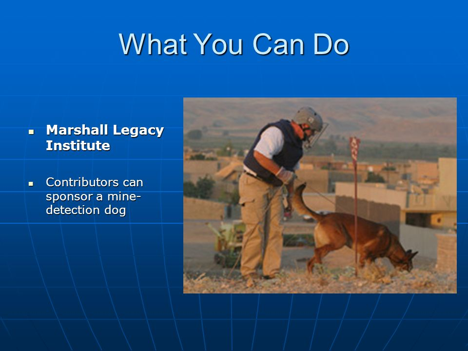 What You Can Do Marshall Legacy Institute