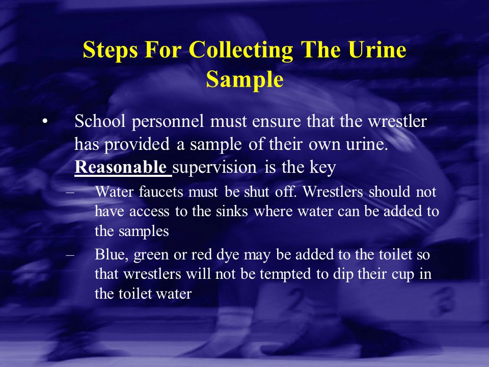 Steps For Collecting The Urine Sample