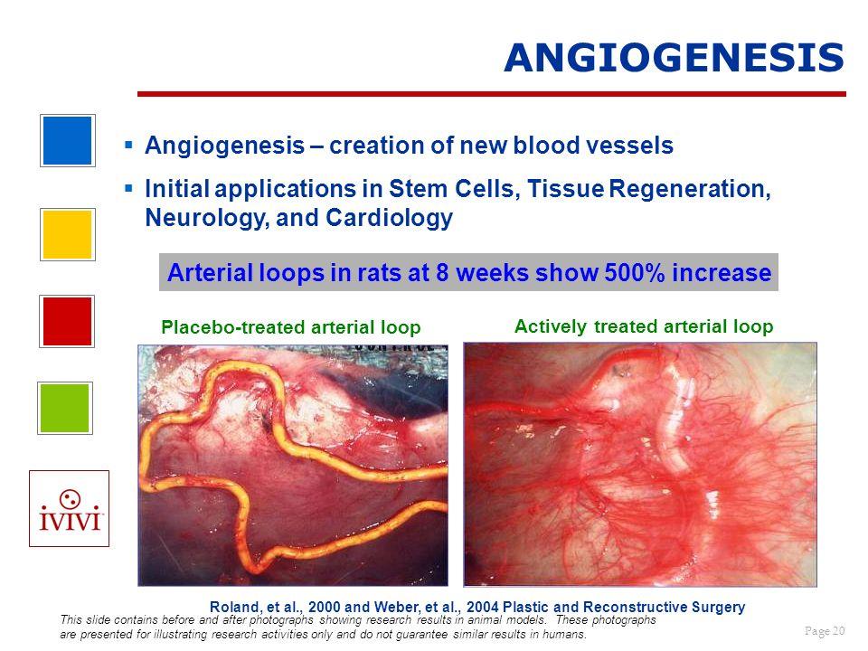 ANGIOGENESIS Angiogenesis – creation of new blood vessels