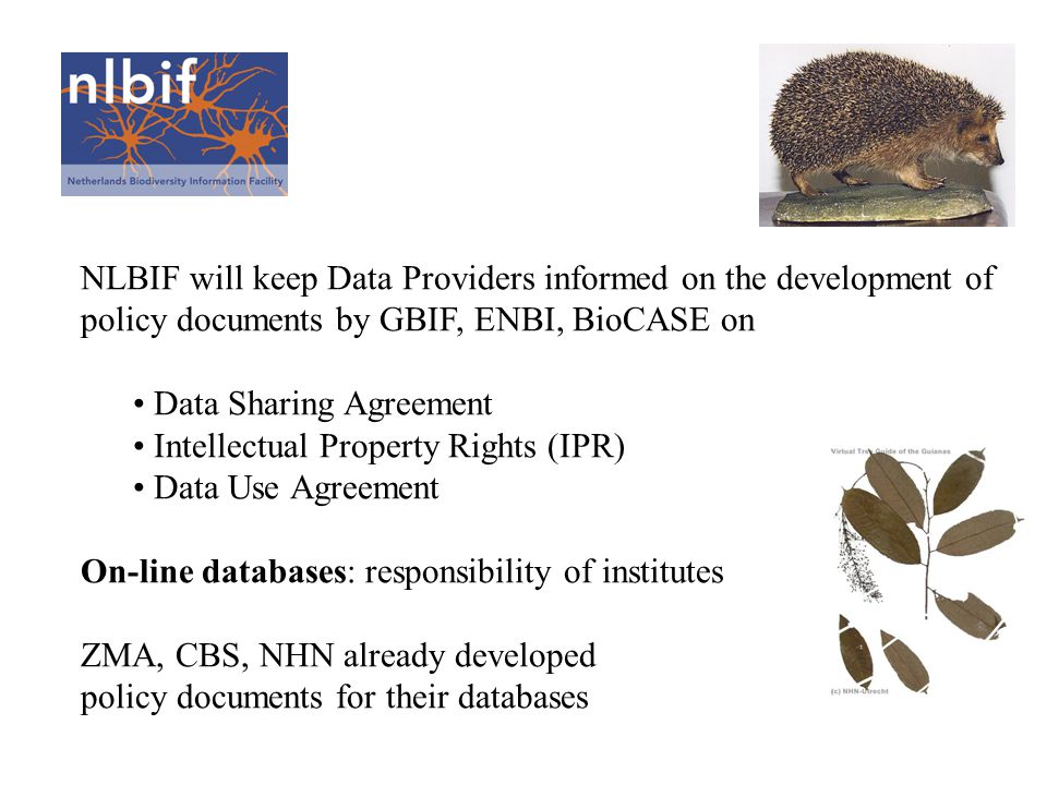 NLBIF will keep Data Providers informed on the development of