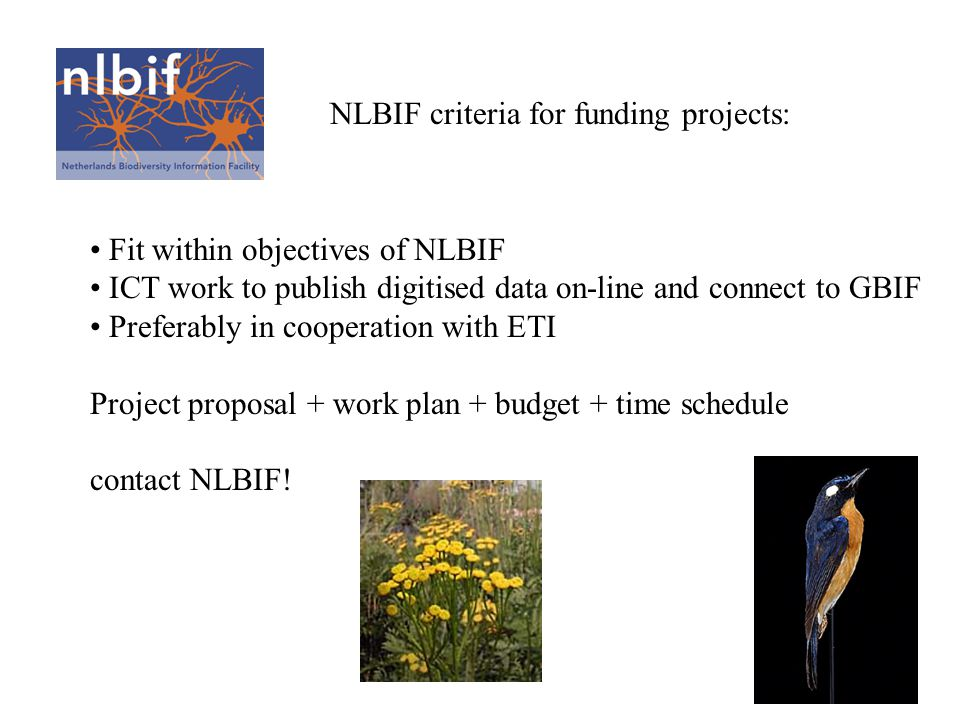 NLBIF criteria for funding projects: