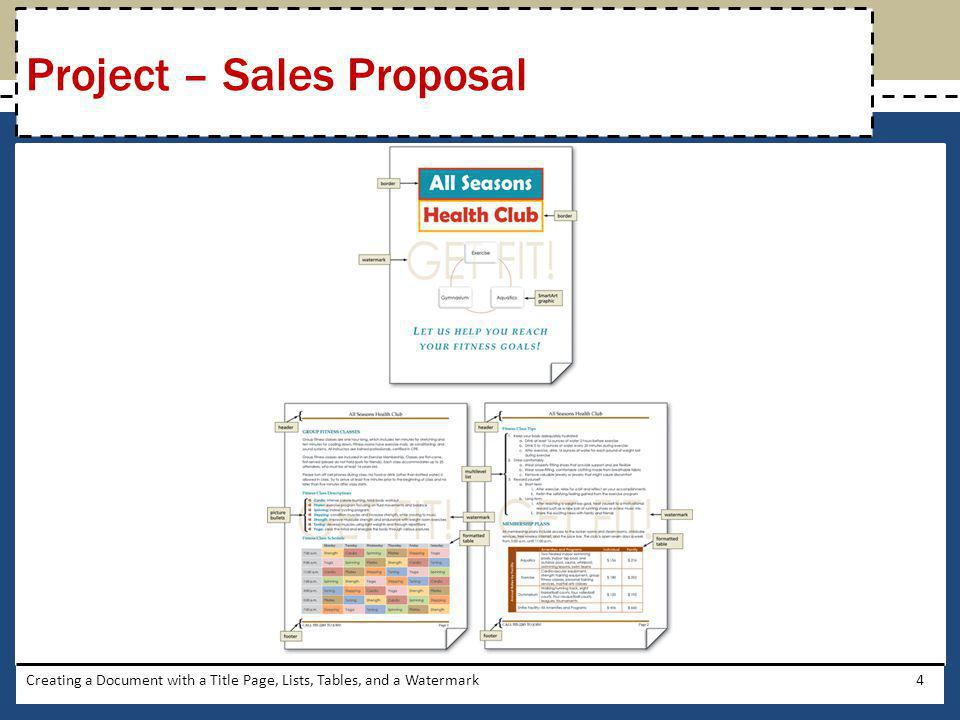 Project – Sales Proposal