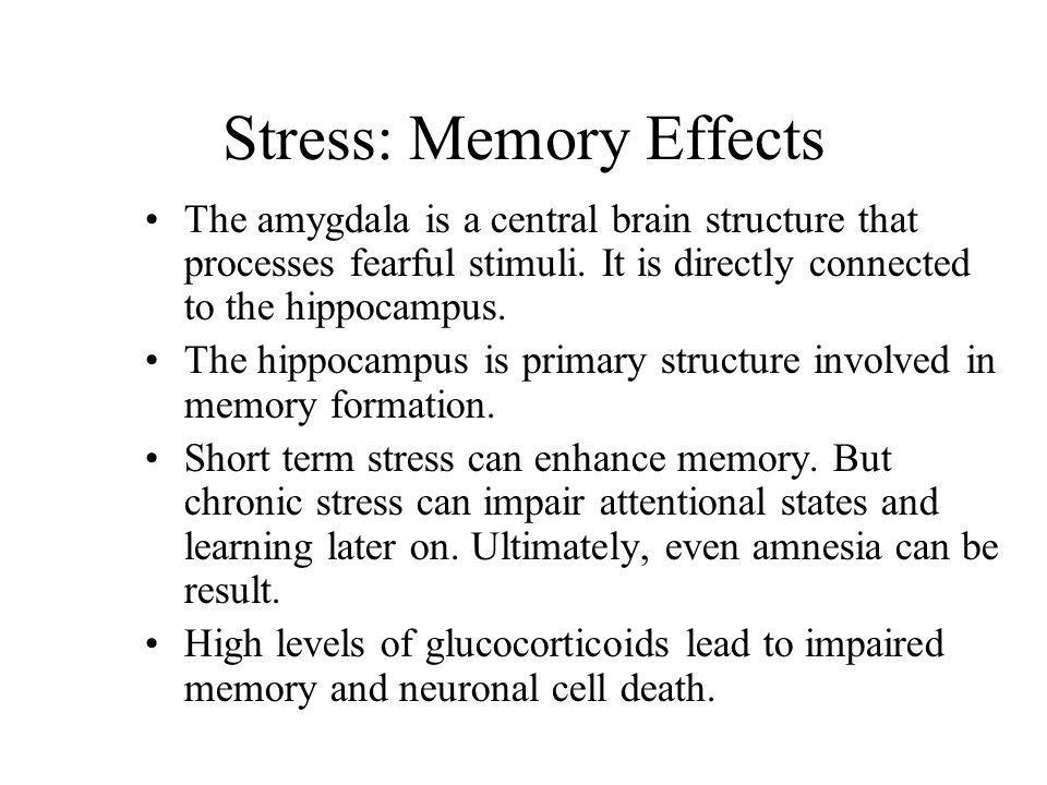Stress: Memory Effects
