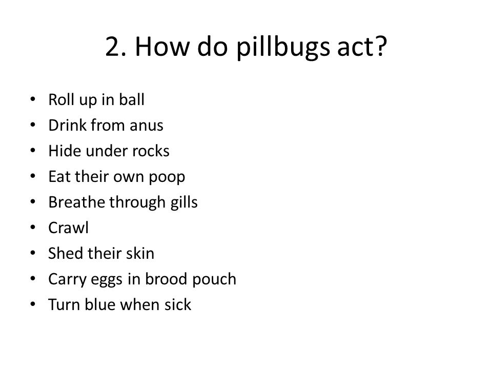 2. How do pillbugs act Roll up in ball Drink from anus