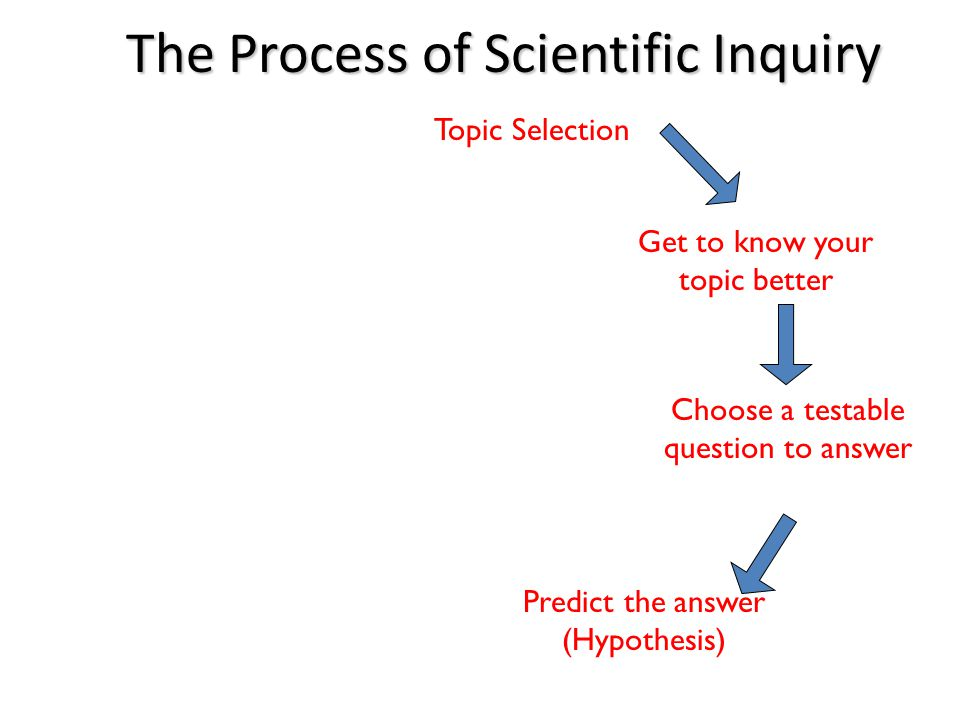 The Process of Scientific Inquiry