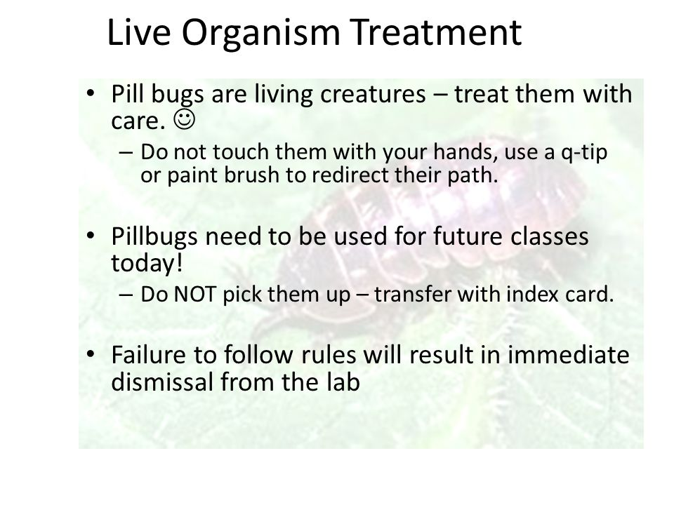 Live Organism Treatment