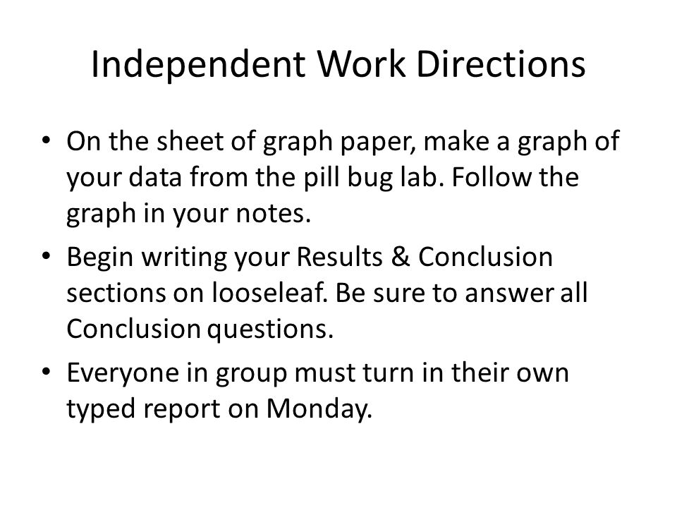 Independent Work Directions