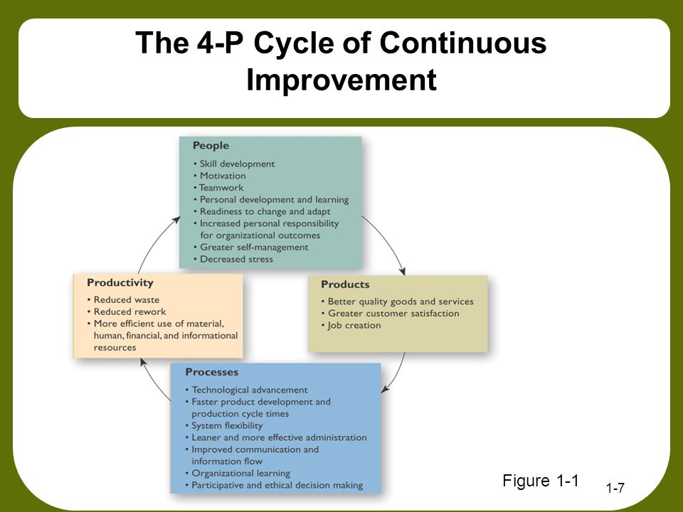 The 4-P Cycle of Continuous Improvement