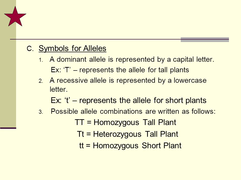 Ex: 't' – represents the allele for short plants